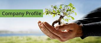 company-profile(1)